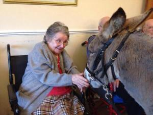 """One pensioner gains a voice from donkey therapy: """"You tell that Father Volpi to lay off them!"""""""