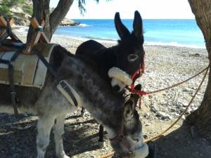 Rubí & Matilde @ the beach 26JAN14