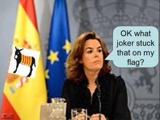 flag minister