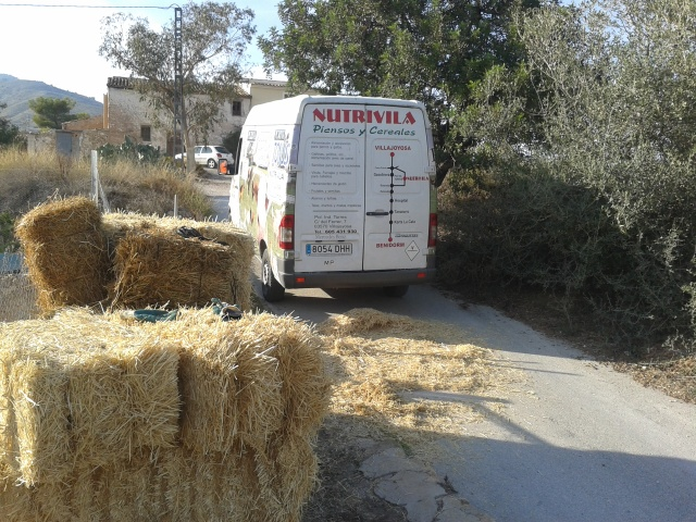 Nutrivila van after delivery