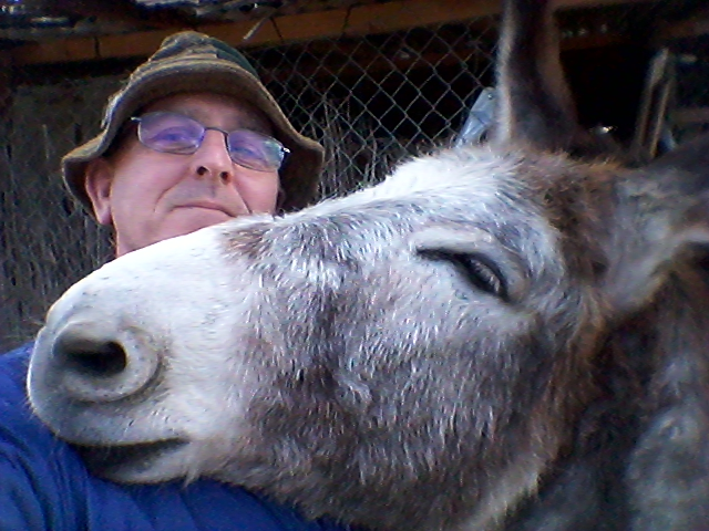 Matilde spends the first Sunday in Lent quietly reflecting on the donkey's role in the Passion story