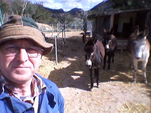 First Sunday in Lent, with donkeys