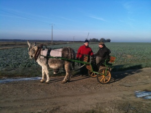 Donkey cart to Saint Savin, Boxing Day 2010