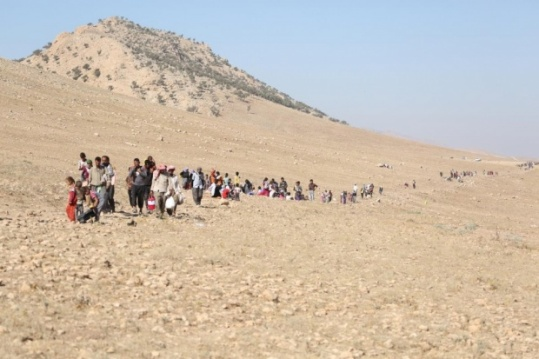 Unnecessary human population on Mount Sinjar